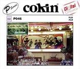 Cokin Filter P046 FL-D