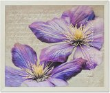 Reprodukcija 1706019 su rėmu 4245 50*60 Violetiniai žiedai