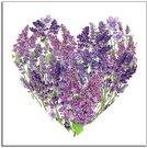 Reprodukcija Širdis iš violetinių gėlių 30X30 cm 92565