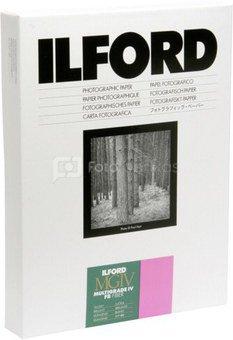 1x10 Ilford MG IV FB 31x41 (1K)