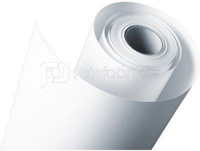 1x2 Fujifilm DL Paper DL600 127 mm x 180 m glossy