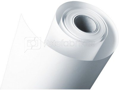 1x2 Fujifilm DL Paper DL600 127 mm x 180 m lustre