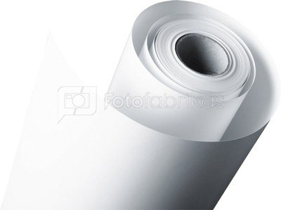 1x4 Fujifilm DL Paper WP 230 279 mm x 100 m lustre