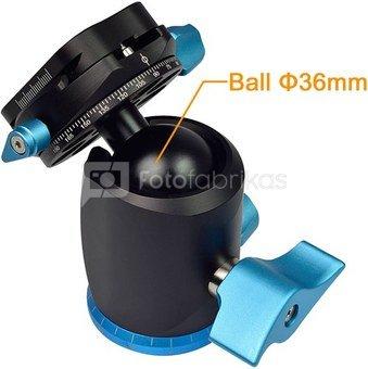 Caruba Ball Head   X 36 (blue)