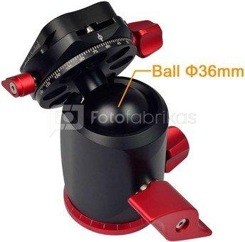 Caruba Ball Head   X 36 (red)