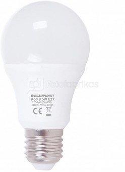 Blaupunkt A60-12 LED 8.5W 806lm E27 3000K