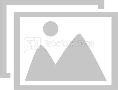 BW OUTDOOR CASE TYPE 2000 FOR DJI MAVIC MINI FLY COMBO ORANGE