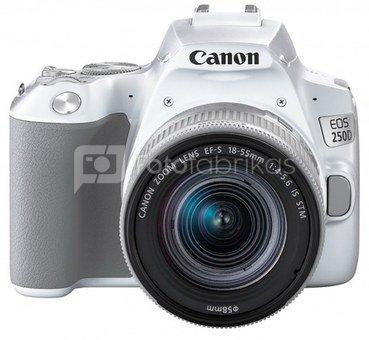 Canon EOS 250D + 18-55mm IS STM (baltas)