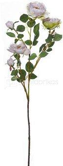 Dekoratyvinė gėlė Angliška rožė (12) H: 95 cm. PS06284PT SAVEX