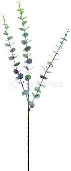 Dekoratyvinė gėlė Eukaliptas (12) h 72 cm SAVEX