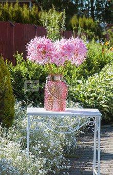 Dekoratyvinė gėlė Nerinė (12) H: 55 cm. PS017494 SAVEX