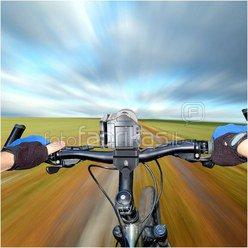 Delkin Fat Gecko Bike Camera Mount