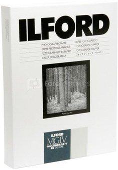 1x 10 Ilford MG IV RC 44M 30x40