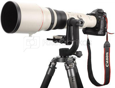 Canon 800mm F/5.6L IS USM