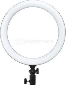 LR120 LED Ring Light Black