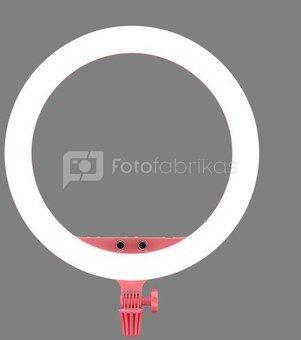 Godox LR150 LED Ring Light Pink