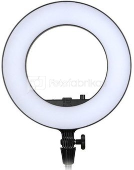 Godox LR180 LED Ring Light Black
