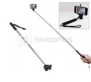 LS250 Fancier Selfie lazda