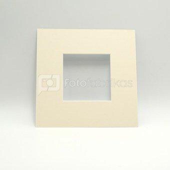 Pasportas 20x20/10x10 gelsvas
