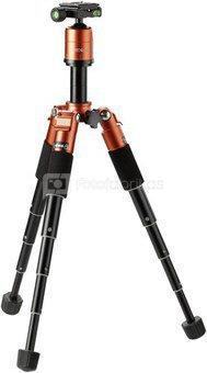 Rollei Compact Traveler Mini M-1 orange