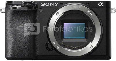 Sony Alpha a6100 body