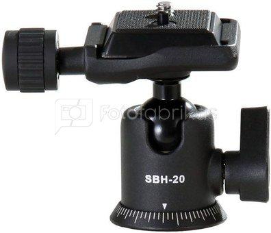 Vanguard SBH-20 galvutė
