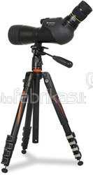 Vanguard VEO 235AP Tripod (Aluminum) +PH-25 head, 28mm tubular, 3-sec., Extended:1585mm; Folded:630mm