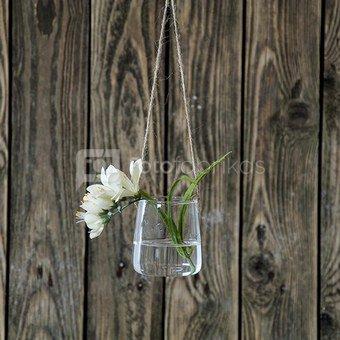 Vazelė stiklinė (6) YQO5112-3 9.7x7.8 cm SAVEX