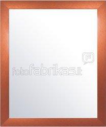 Veidrodis 40*50cm (išorė 47,5x57) su metalo rėmu 1101094