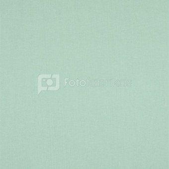 walimex Cloth Background 2,85x6m mint green