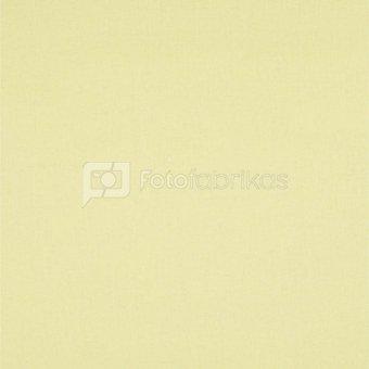 walimex Cloth Background 2,85x6m popcorn/yellow