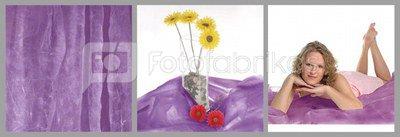 walimex Cloth Background Light, 3x6m purple