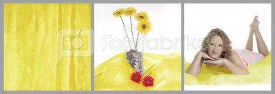 walimex Cloth Background Light, 3x6m yellow