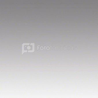 walimex Graduation Background 1,5x2m, grey