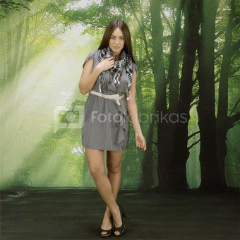 walimex pro Photo Motif Background Glade, 3x6m