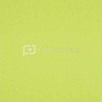 walimex Stoffhintergrund 2,85x6m neongrün 389U
