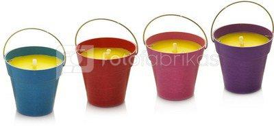 Žvakė indelyje citrinžolės kvapo 8.5x8 cm dega 15 val. 871125246172 (4 spalvų)