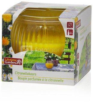 Žvakė stikliniame indelyje citrinžolių kvapo 7x6 cm 85 gr. 871125201764