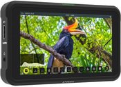 Atomos Shinobi video monitorius