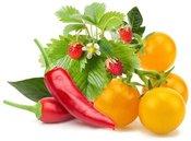Click & Grow Plant Pod Fruit & Veggie Mix 9 шт.
