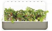 Click & Grow Smart Garden 9, бежевый