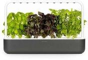 Click & Grow Smart Garden 9, серый