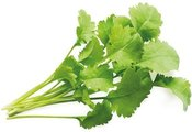 Click & Grow Smart Garden refill Кресс-салат 3 штуки