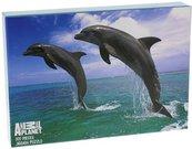 """Dėlionė Puzzle 300 dalių """"Delfinai"""" H:15 W:24 D:3 cm. AP162 psb"""