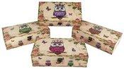 Dėžutė su pelėdos piešiniu 29x15,5x8 cm 49689 (4 spalvos)