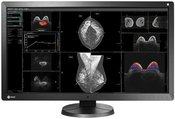 EIZO RX850 RadiForce Medicininis monitorius