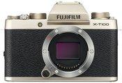 Fujifilm X-T100 (šampano auksinė)