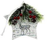 Kalėdinė dekoracija Žvagždė puošta snaigėmis stiklinė XM1291 kld