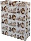 Maišelis pakavimo 50x40x15 cm 87987 su katinukais
