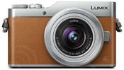 Panasonic Lumix DC-GX800 + 12-32mm (Rudas)